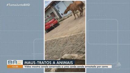 Vídeo mostra cavalo sendo arrastado por carro no município de poções, na Bahia