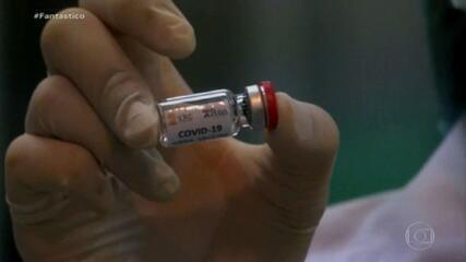 Clínicas particulares brasileiras negociam compra de 5 milhões de vacinas indianas
