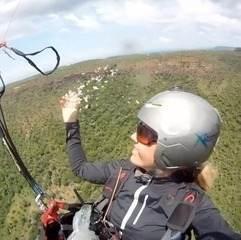 Atleta joga sementes de ipês durante voo
