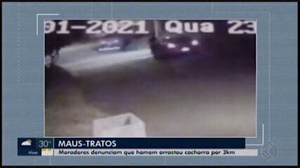 Em Oliveira, Polícia Civil investiga denúncia envolvendo maus-tratos a animal