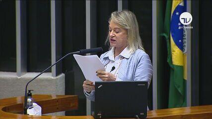 'Daniel Silveira transformou o mandato em plataforma de discurso de ódio', diz relatora