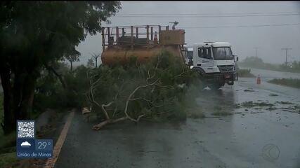 Ventos fortes e chuva causam queda de postes em Uberaba