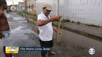 Moradores do Ipsep, no Recife, recolhem peixes nas ruas após fortes chuvas