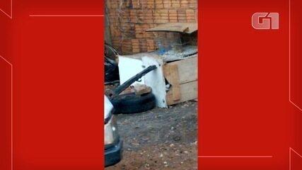 Cachorro permaneceu preso durante dois meses dentro de uma caixa