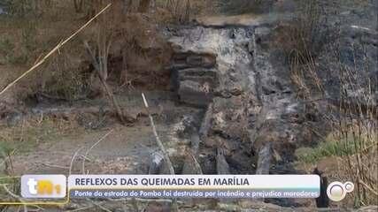 Incêndios em mata atingem pontes da zona rural de Marília