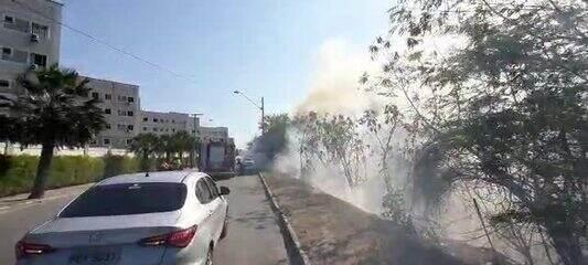 Área de mata em Fortaleza sofre incêndio após morador queimar sofá