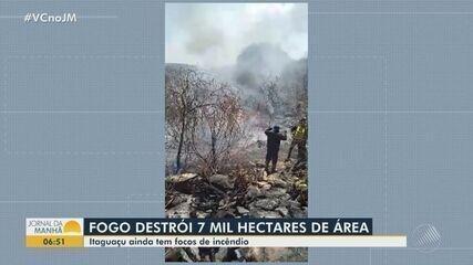 Sete mil hectares de vegetação são destruídos por incêndio no município de Itaguaçu