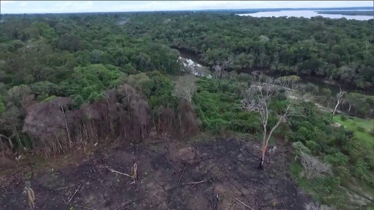 Aquecimento global pode se tornar oportunidade para a Amazônia