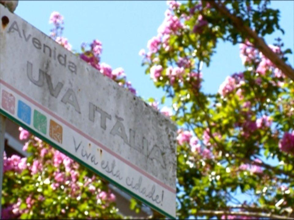 #Partiu Serra visita Otávio Rocha, distrito de Flores da Cunha, RS