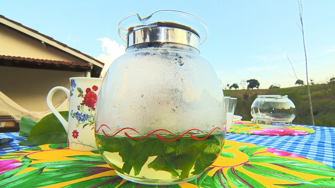 Chá preparado com folhas de maracujá tem efeito calmante