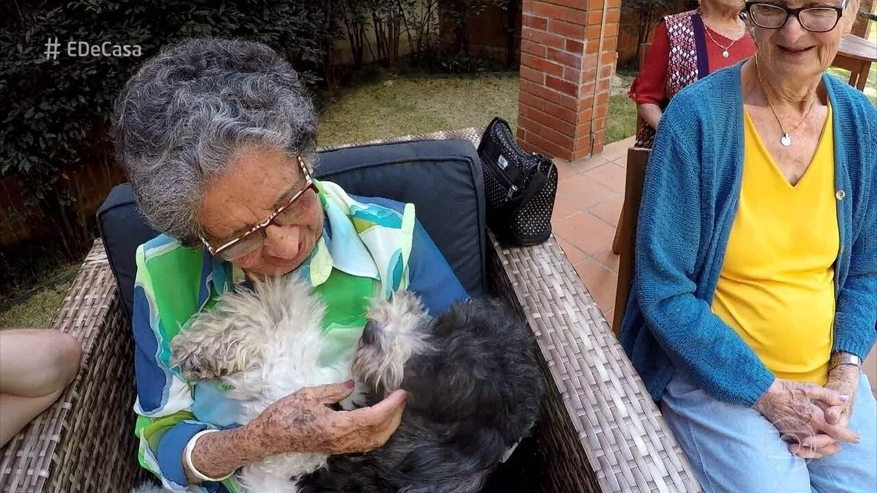 Cachorros fazem a alegria de idosos em abrigo de São Paulo