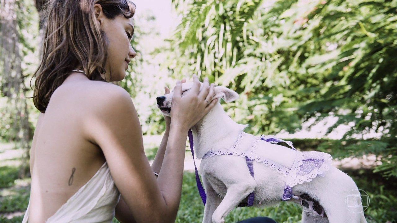 Laura Neiva conhece abrigo de animais abandonados