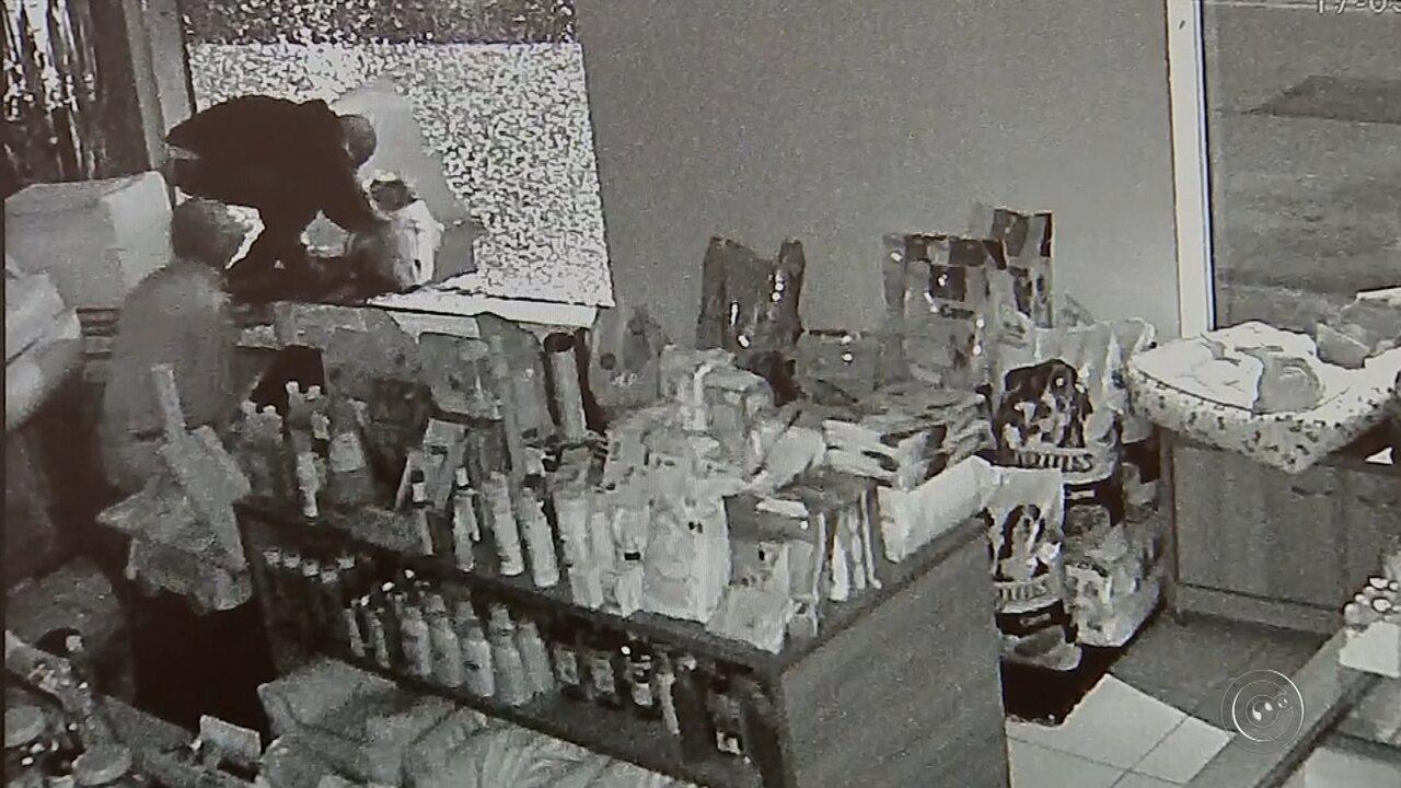 Grupo é preso após furtar ração e objetos de pet shop em Itapetininga
