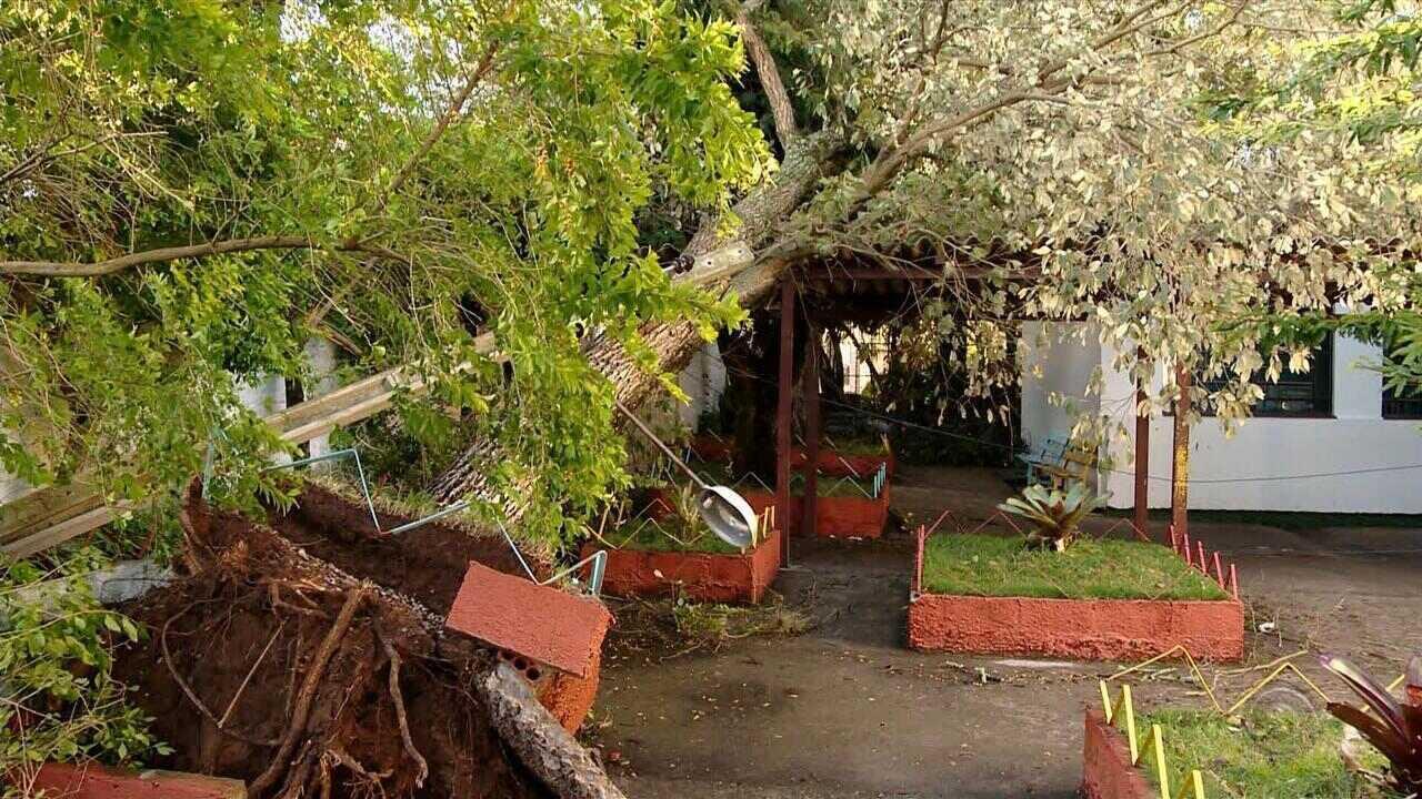 Temporal e rajadas de vento causam estragos em Santa Maria