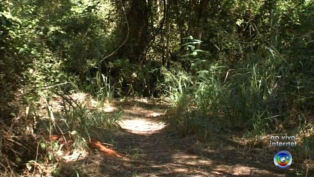 Prefeitura de Jales assina acordo com MP para recuperar bosque abandonado