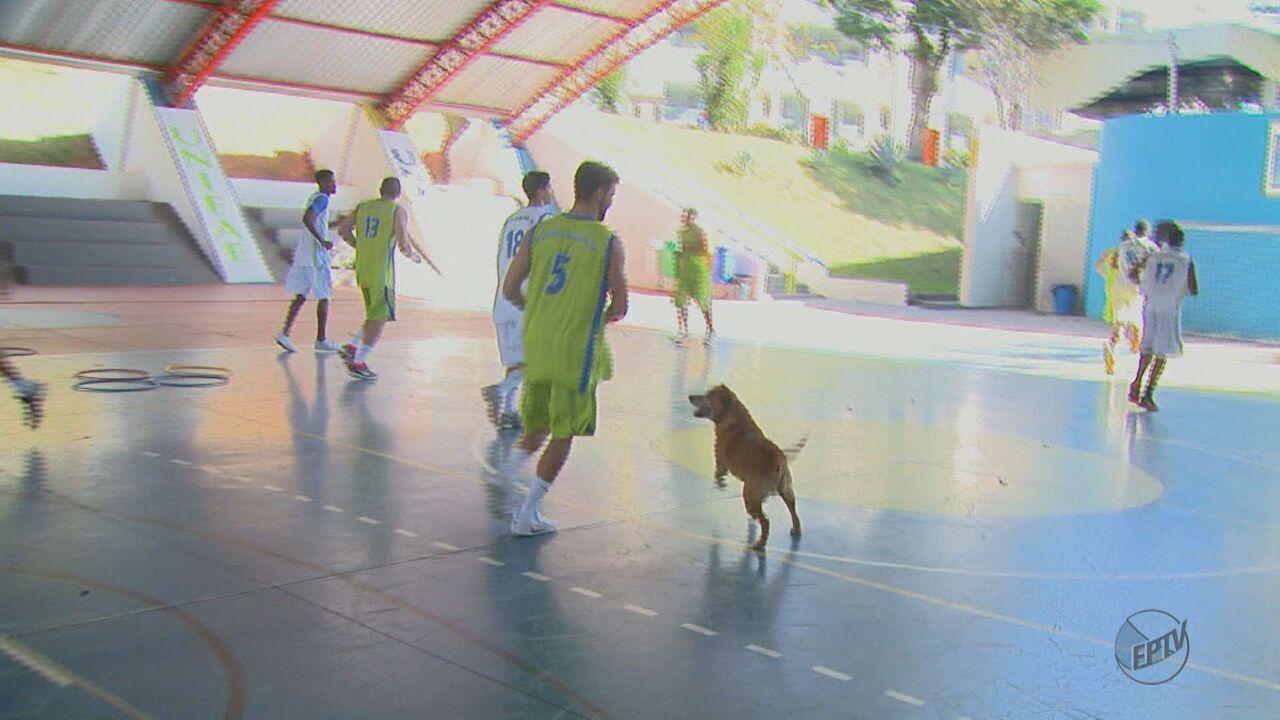 Time de basquete de São João da Boa Vista ganha mascote