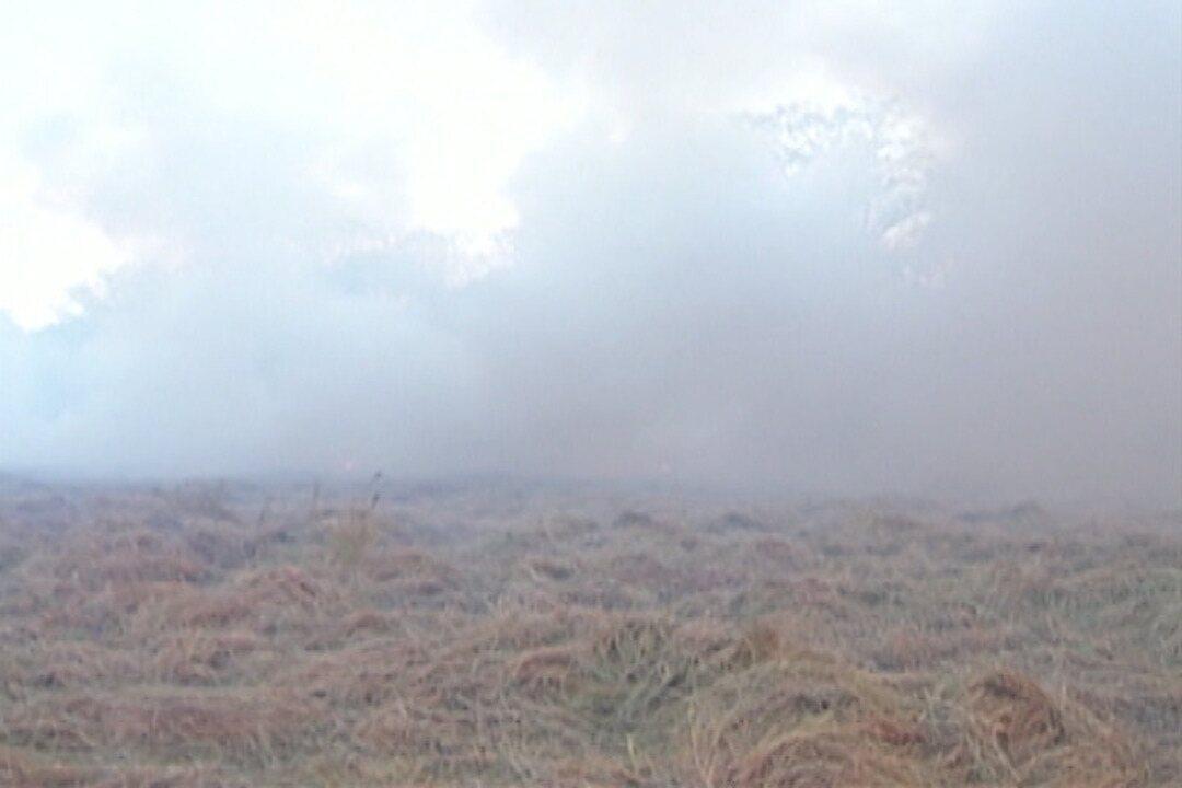 Bombeiros combatem incêndio em terreno do Mogilar