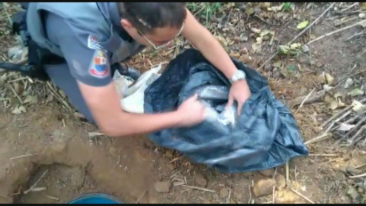 Polícia Militar apreende 31 quilos de maconha dentro de tambor em Campinas