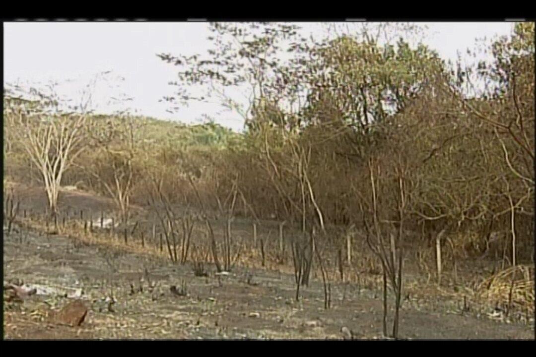 Incêndio entre Uberaba e Conceição das Alagoas é o maior já registrado na região