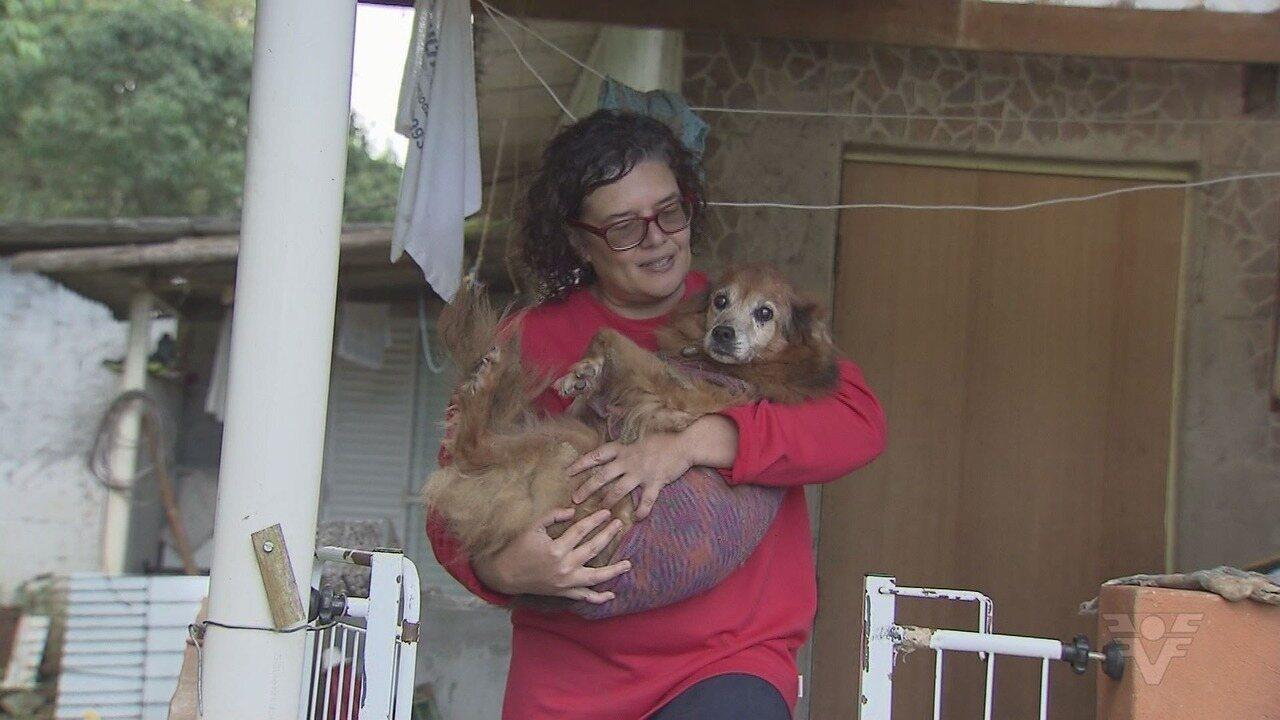 É o Bicho: Cuidadoras tiram animais das ruas e dão novo lar aos pets