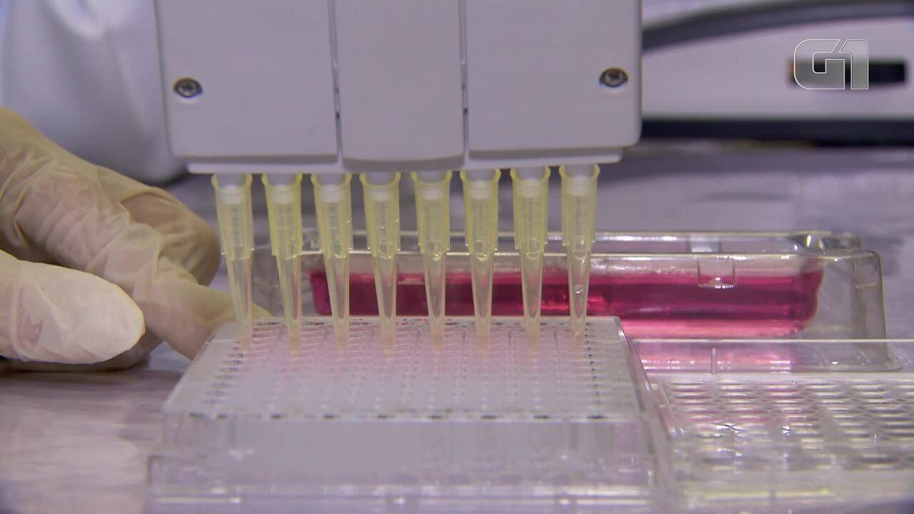 Licenciatura é opção de 70% dos formados em ciências biológicas