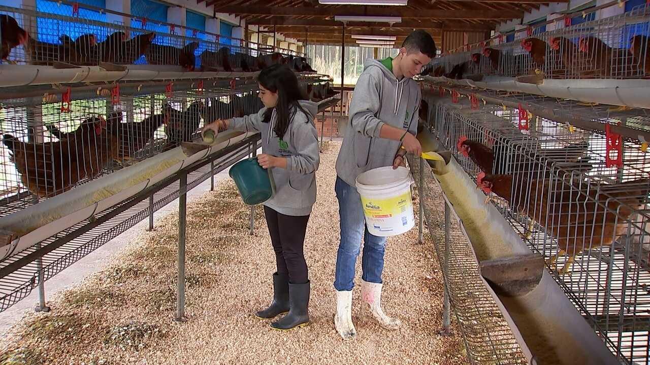 Aumenta número de mulheres em cursos ligados ao agronegócio