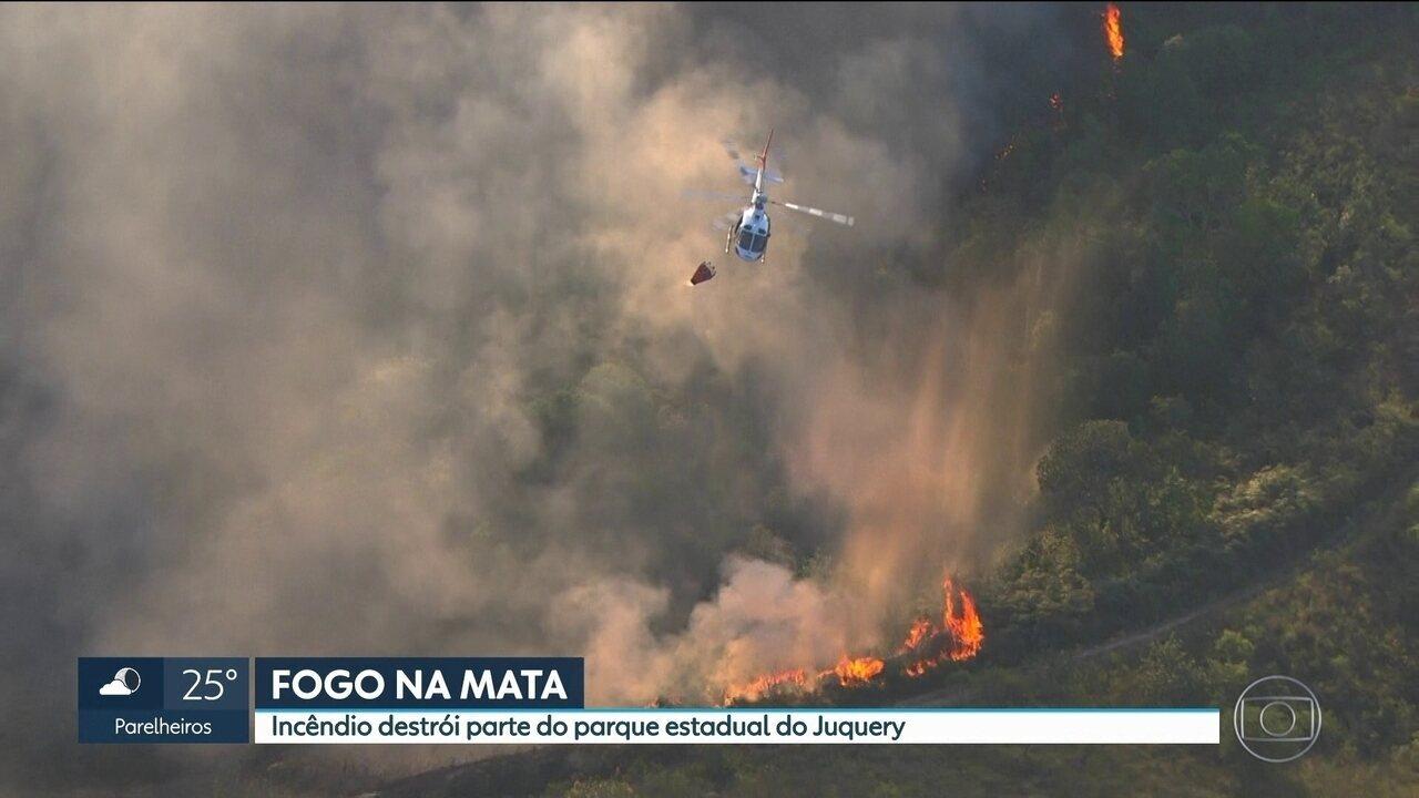 Incêndio florestal de grandes proporções atinge o Parque Estadual do Juquery