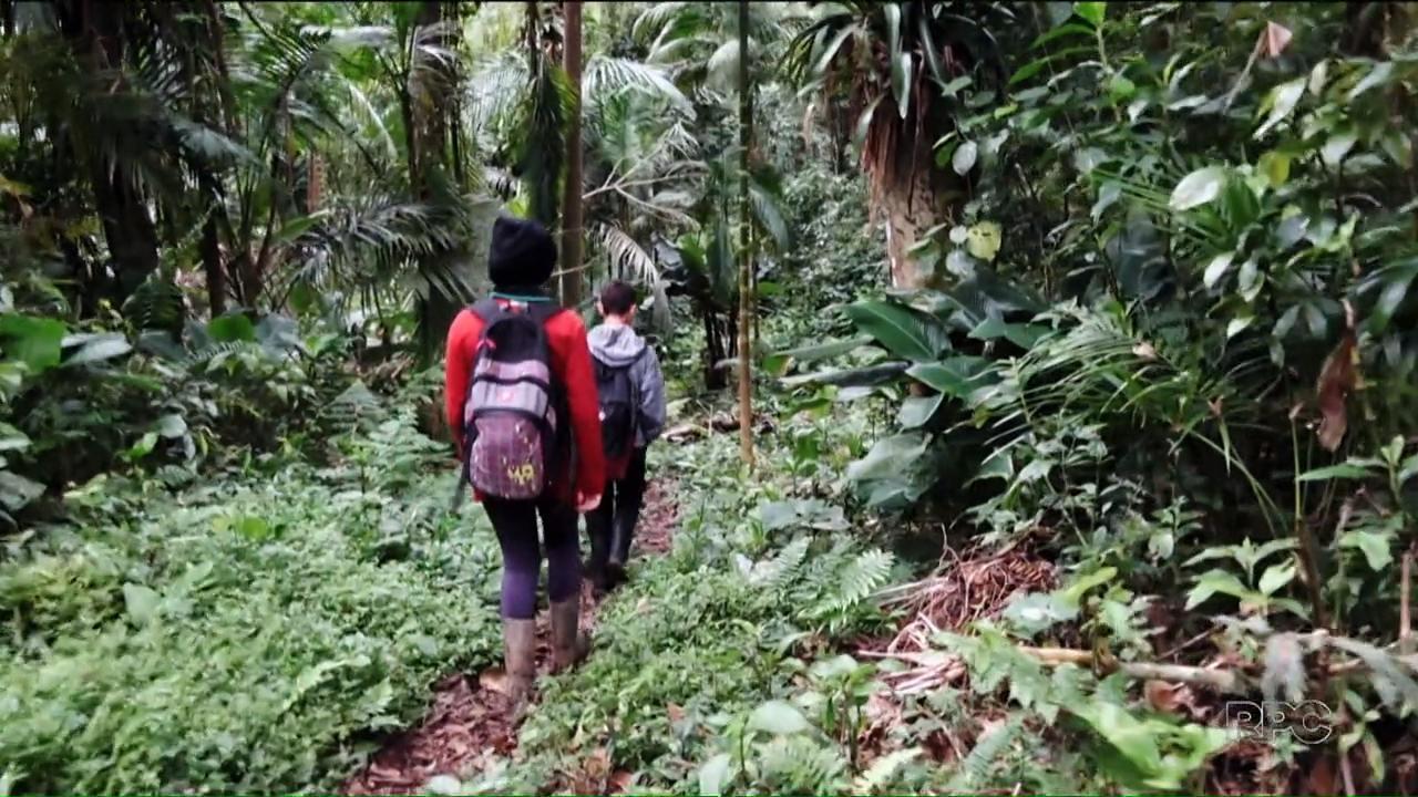 Estudantes de Guaratuba caminham por horas para ir à escola
