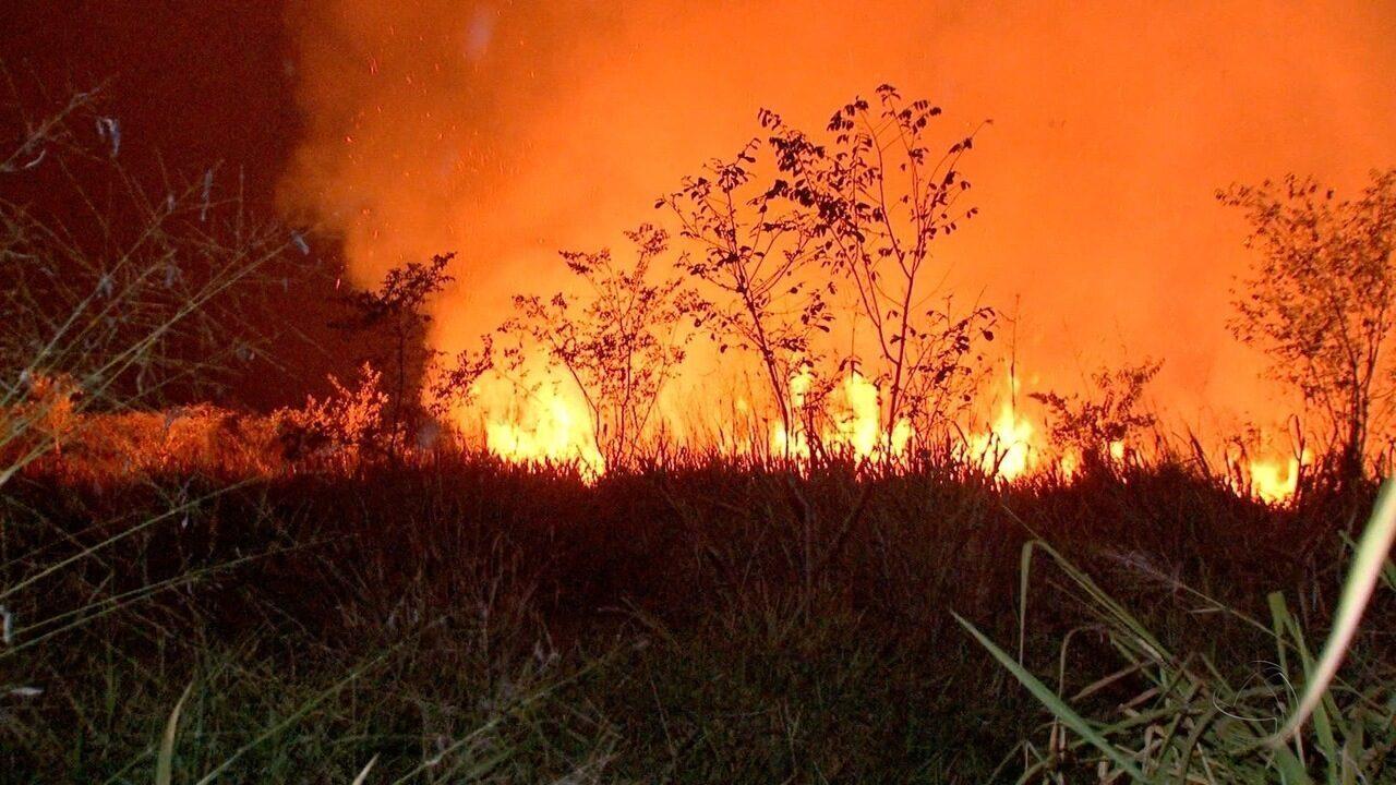 Período de proibição das queimadas pode ser prorrogado se não chover no estado