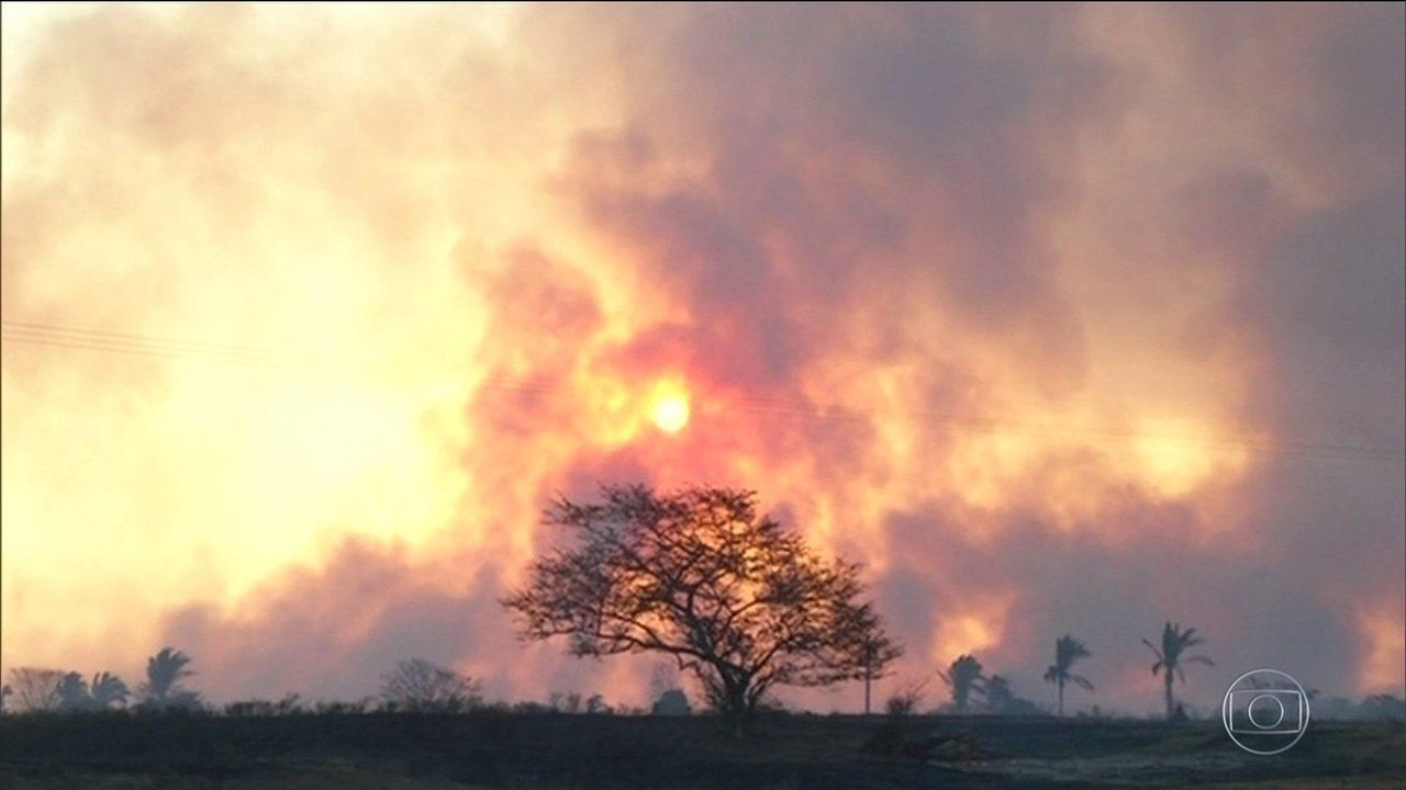 Brasil já tem 178 mil focos de incêndio na mata este ano