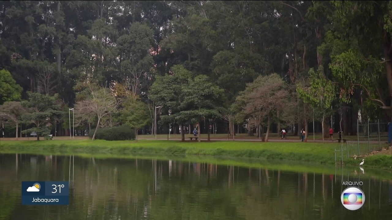 Prefeitura fecha contrato de emergência para limpeza do Parque do Ibirapuera