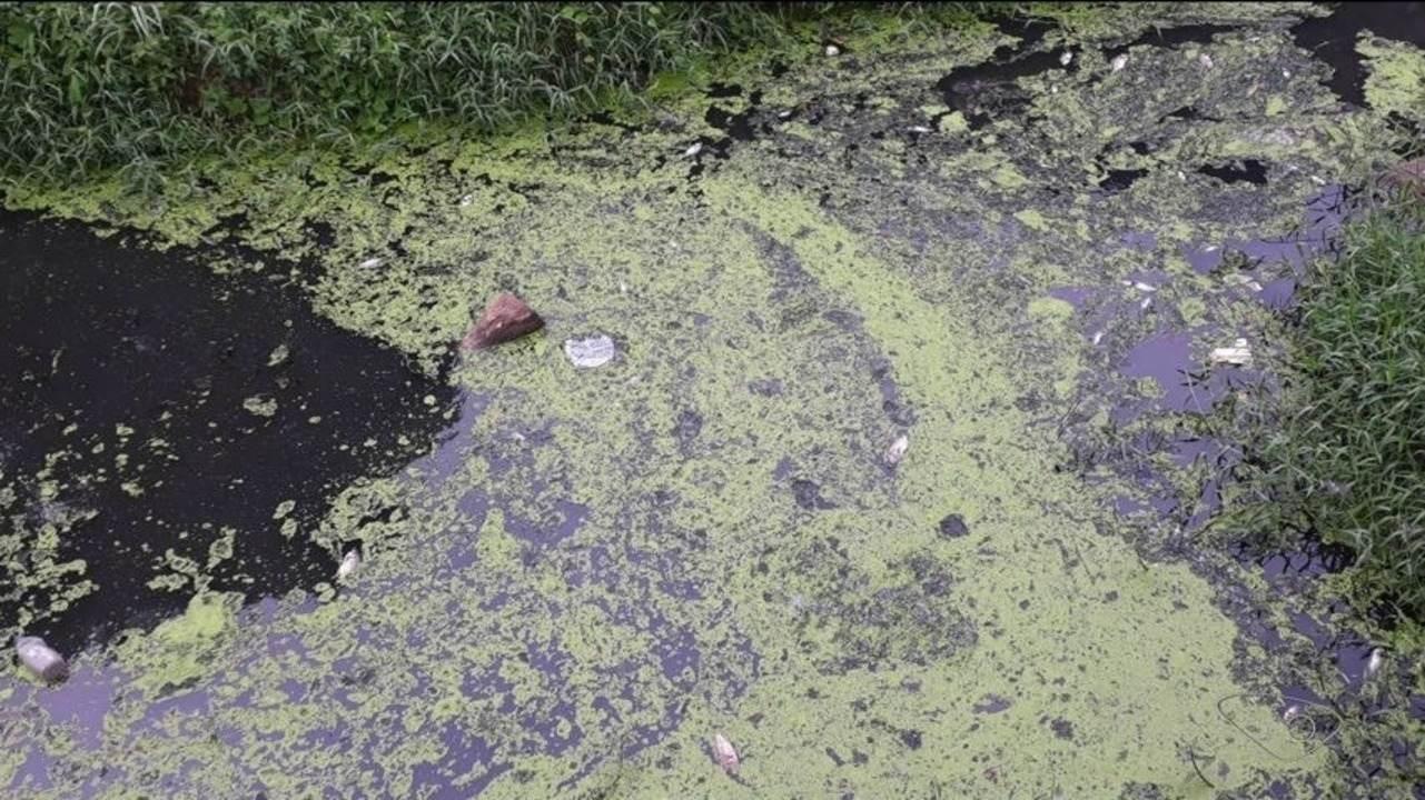 Mancha aparece em córrego de Apiacá, no Sul do Espírito Santo