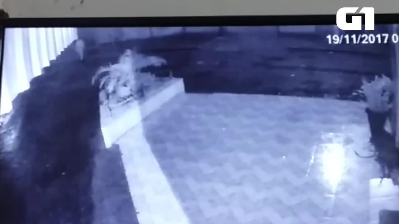 Câmera de segurança mostra jovem momentos antes de desaparecer