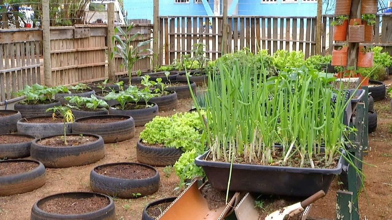 Produtos de horta cultivada em pneus em Arraial do Cabo são doados para a Apae