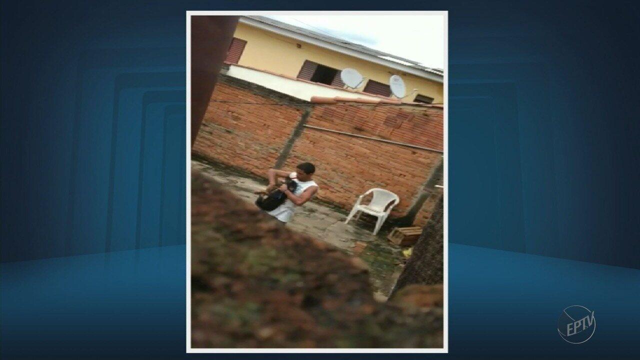 Homem é flagrado agredindo um cachorro no bairro Vila Formosa, em Alfenas (MG)