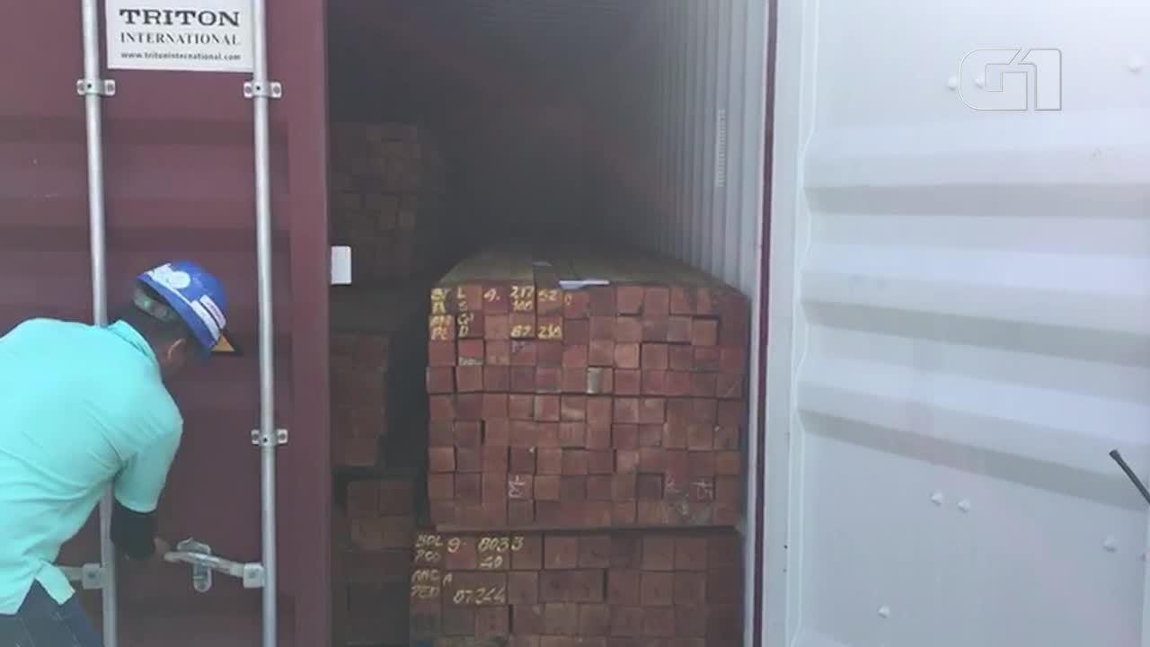 Contêiner de madeira apreendido pela PF em porto de Manaus (Polícia Federal/Divulgação)