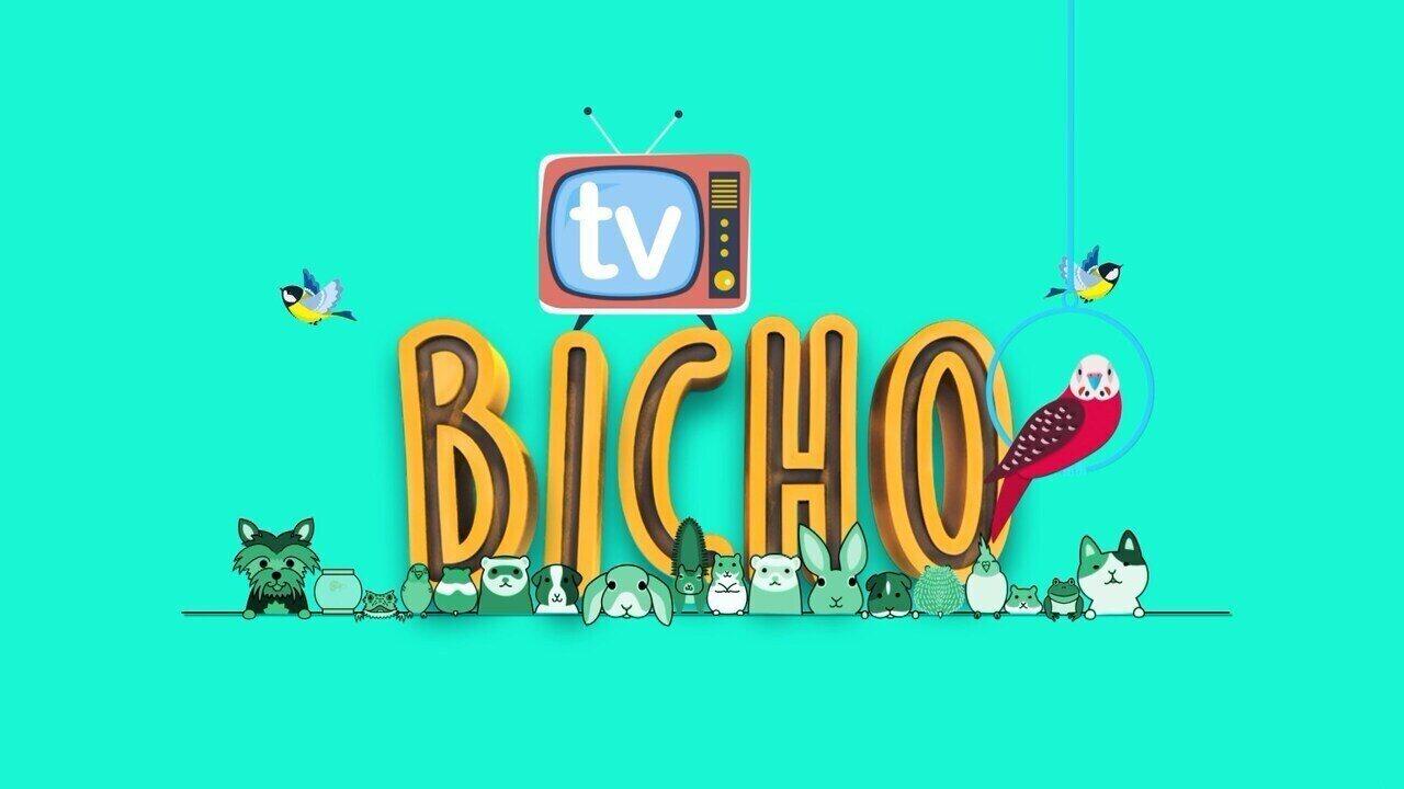 MGTV lança quadro 'TV Bicho'; veja chamada