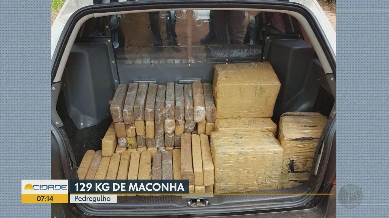Polícia Civil apreende 129 quilos de maconha em Pedregulho, SP