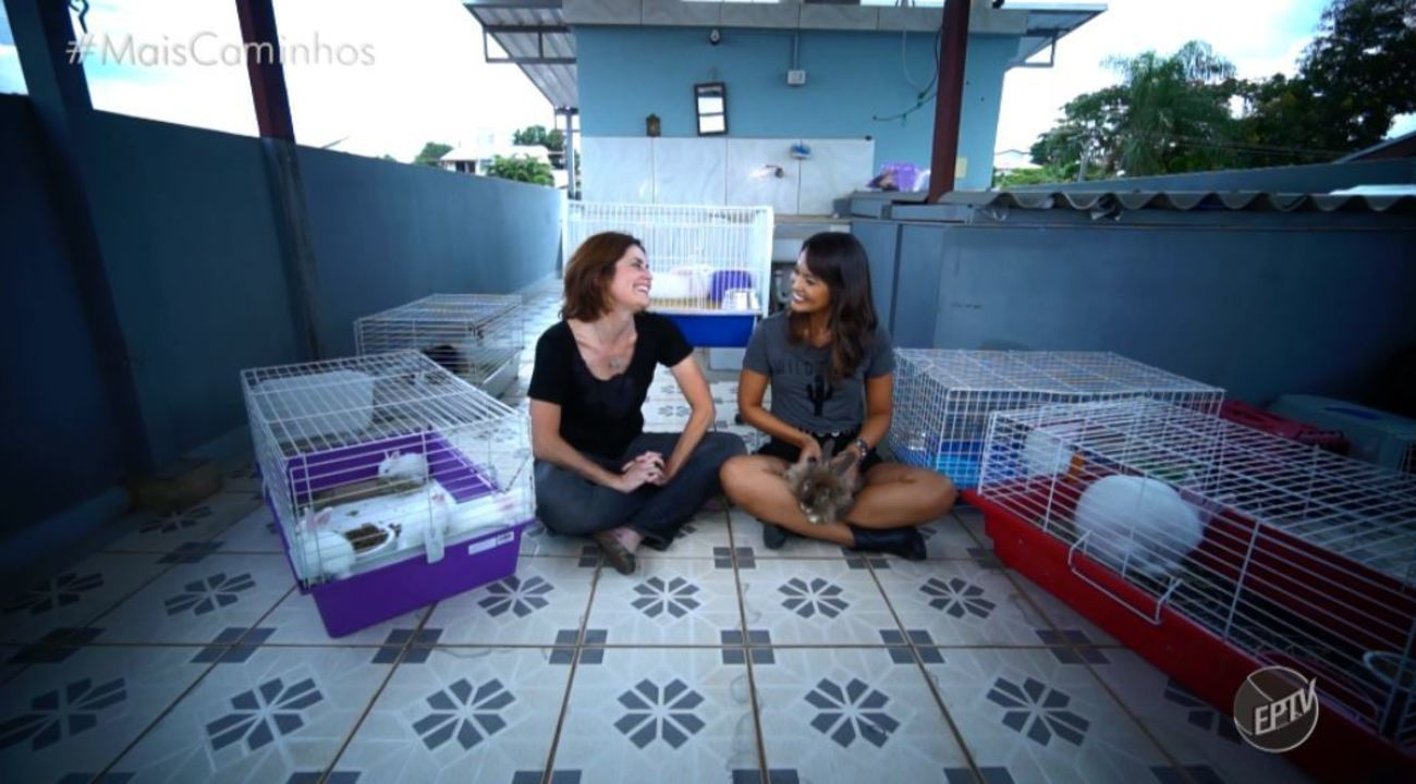 Cris Ikeda ensina como cuidar de Coelhos