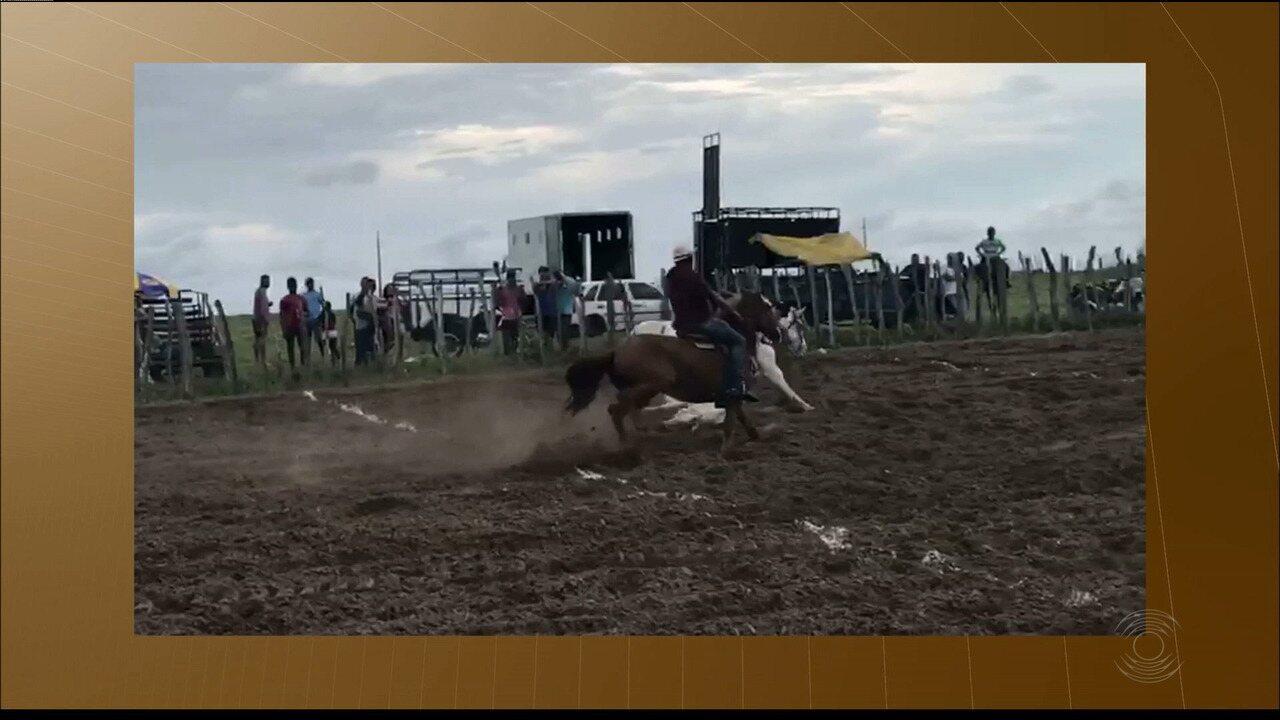 Deputado que defende vaquejada é pisoteado por cavalo e quebra o nariz