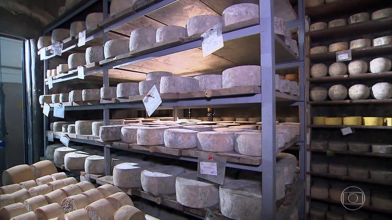 SPA do queijo: lugar perfeito para as bactérias garantirem um sabor delicioso