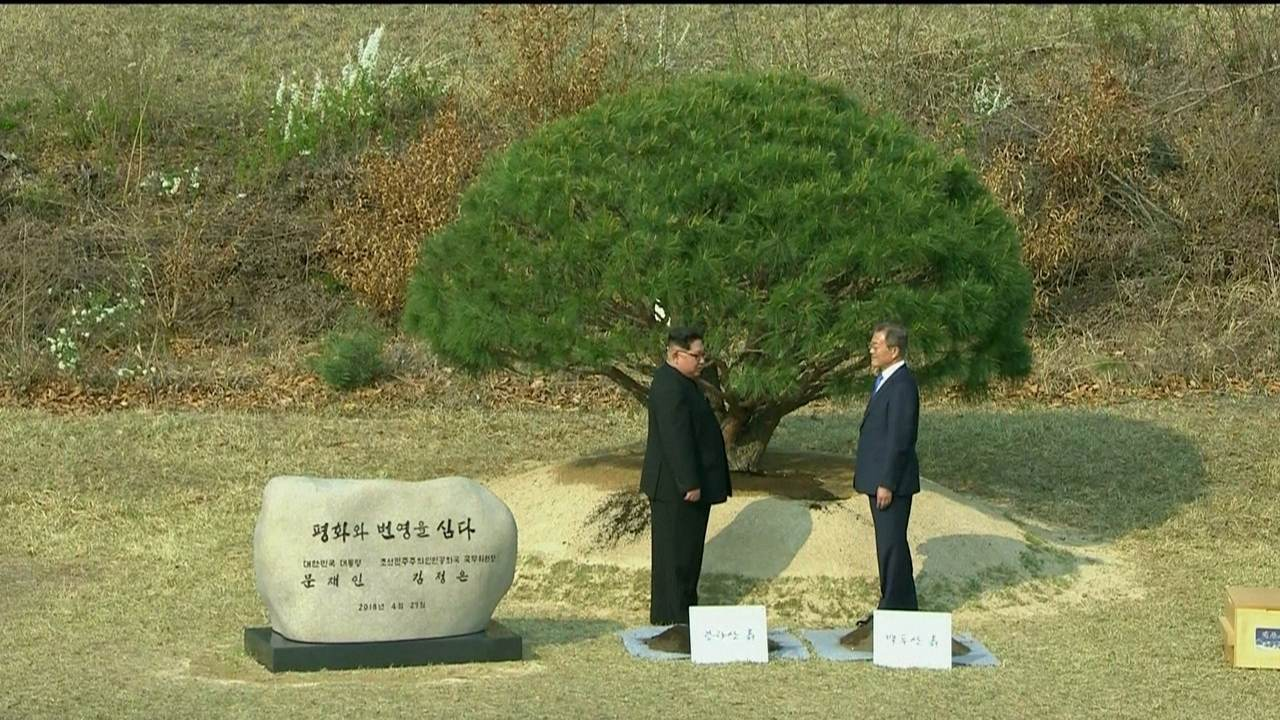 Líderes das Coreias plantam árvore como sinal de paz