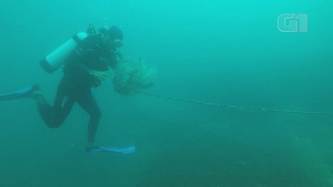 Mergulhadores localizam rede de pesca 'fantasma' na costa de Itanhaém, SP