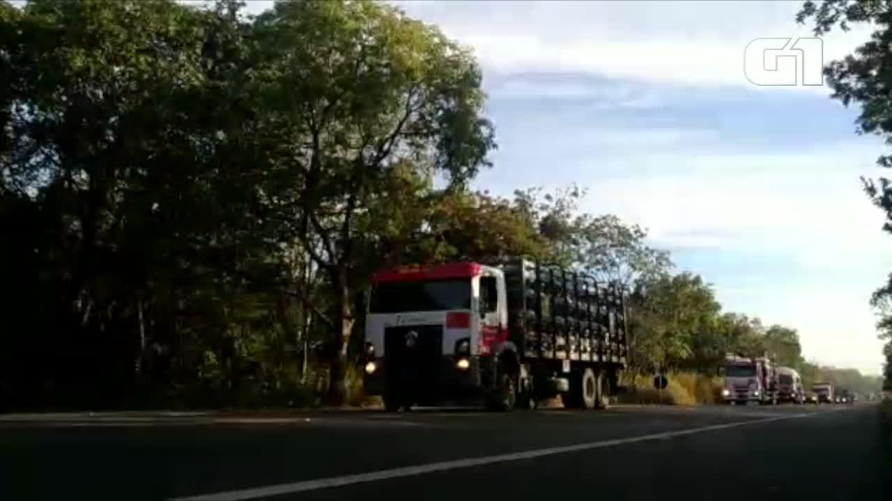Caminhões foram escoltados pela Polícia Militar