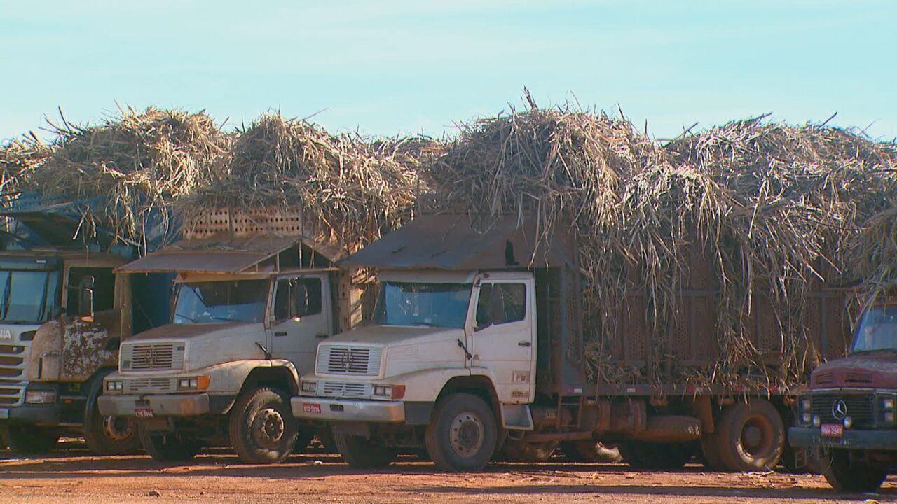 Caminhões e máquinas de usina de cana de Araras estão sem diesel