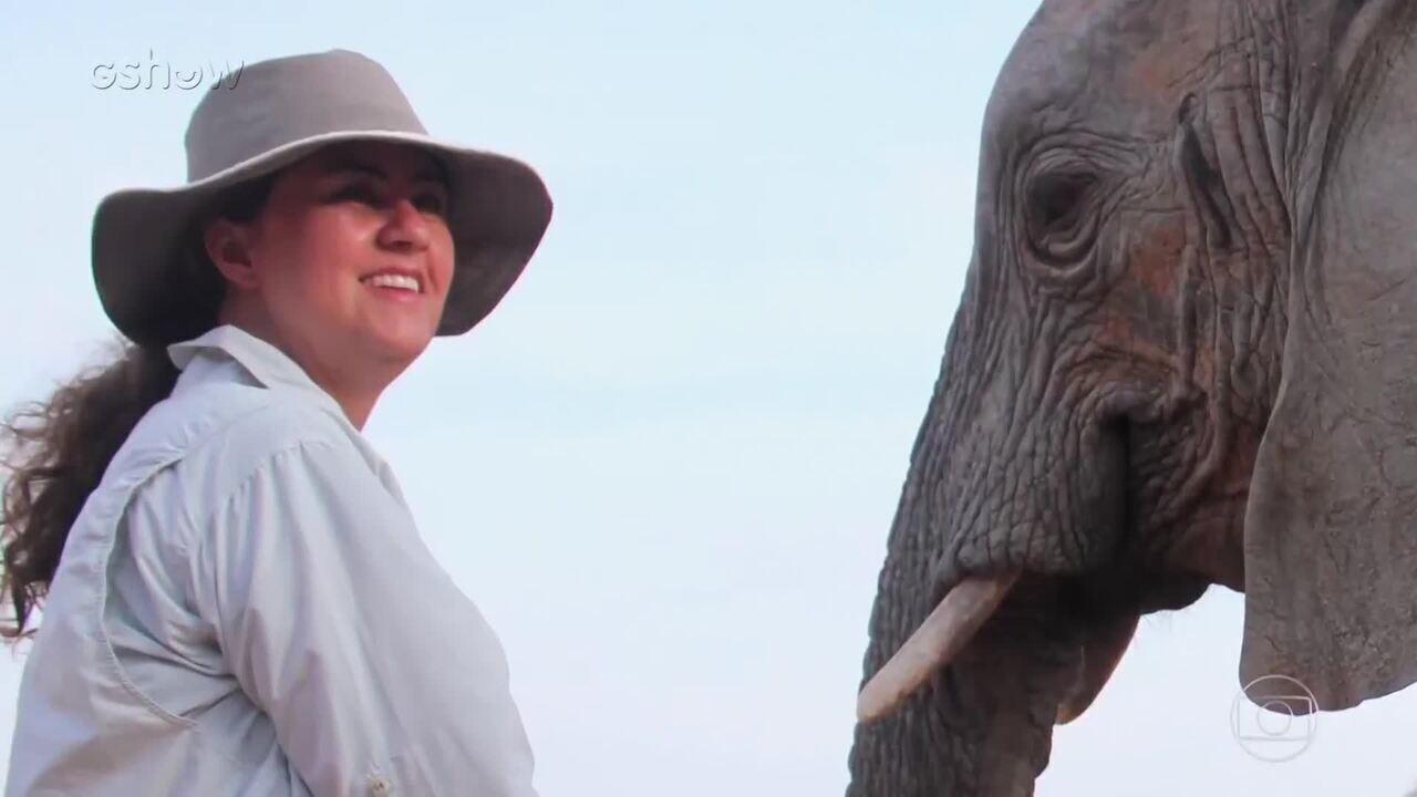 Isabela e Junia falam sobre Santuário dos Elefantes