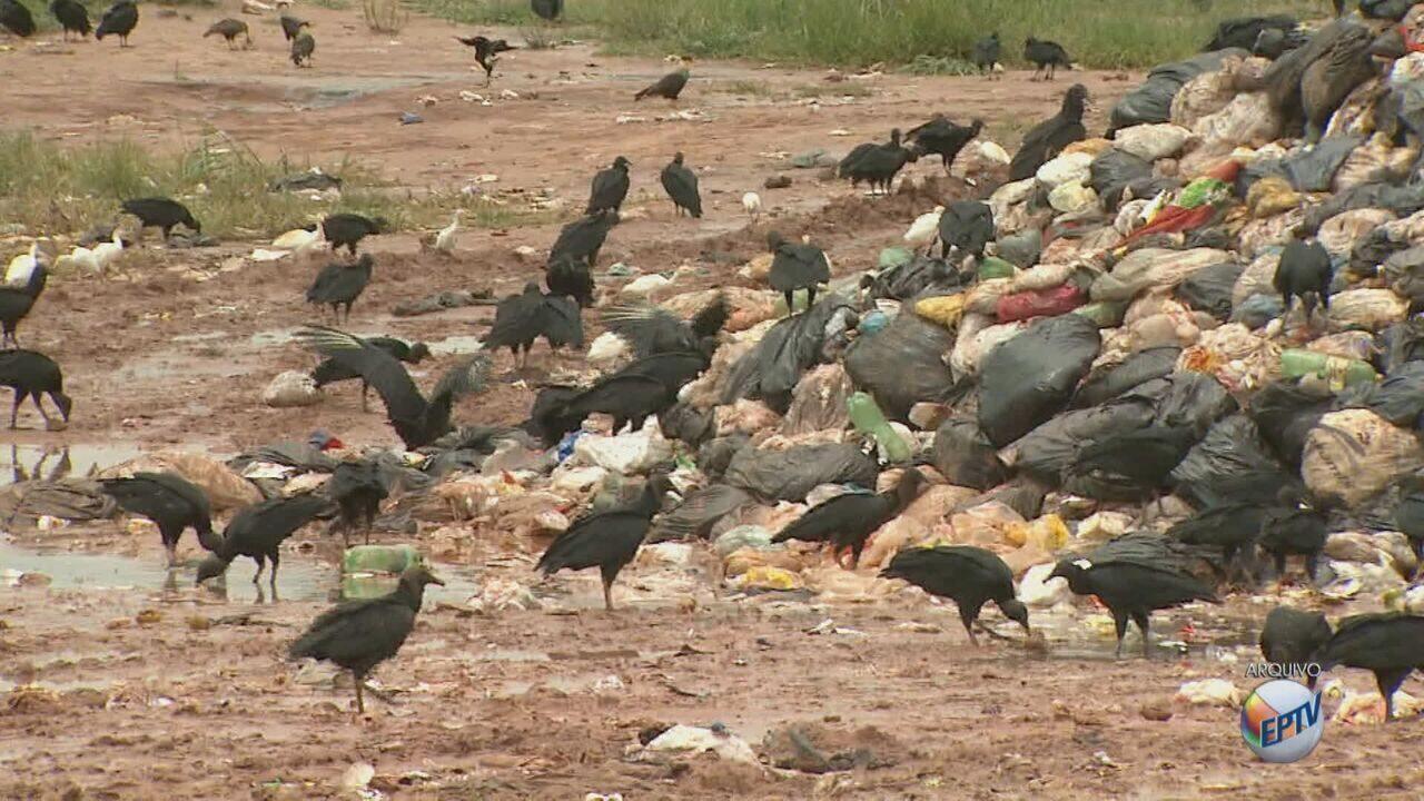 Tratamento de lixo de Leme é considerado o pior do estado pela Cetesb