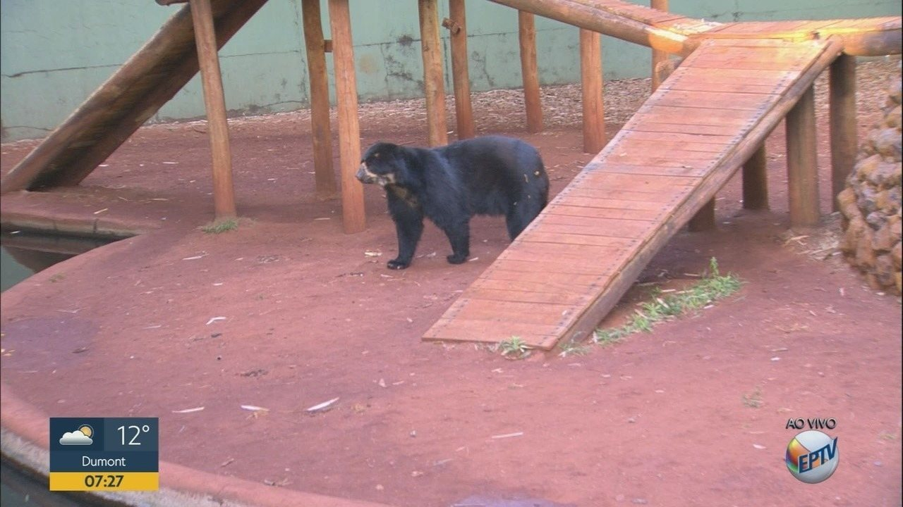 Bosque e Zoológico de Ribeirão Preto inicia programação de férias escolares