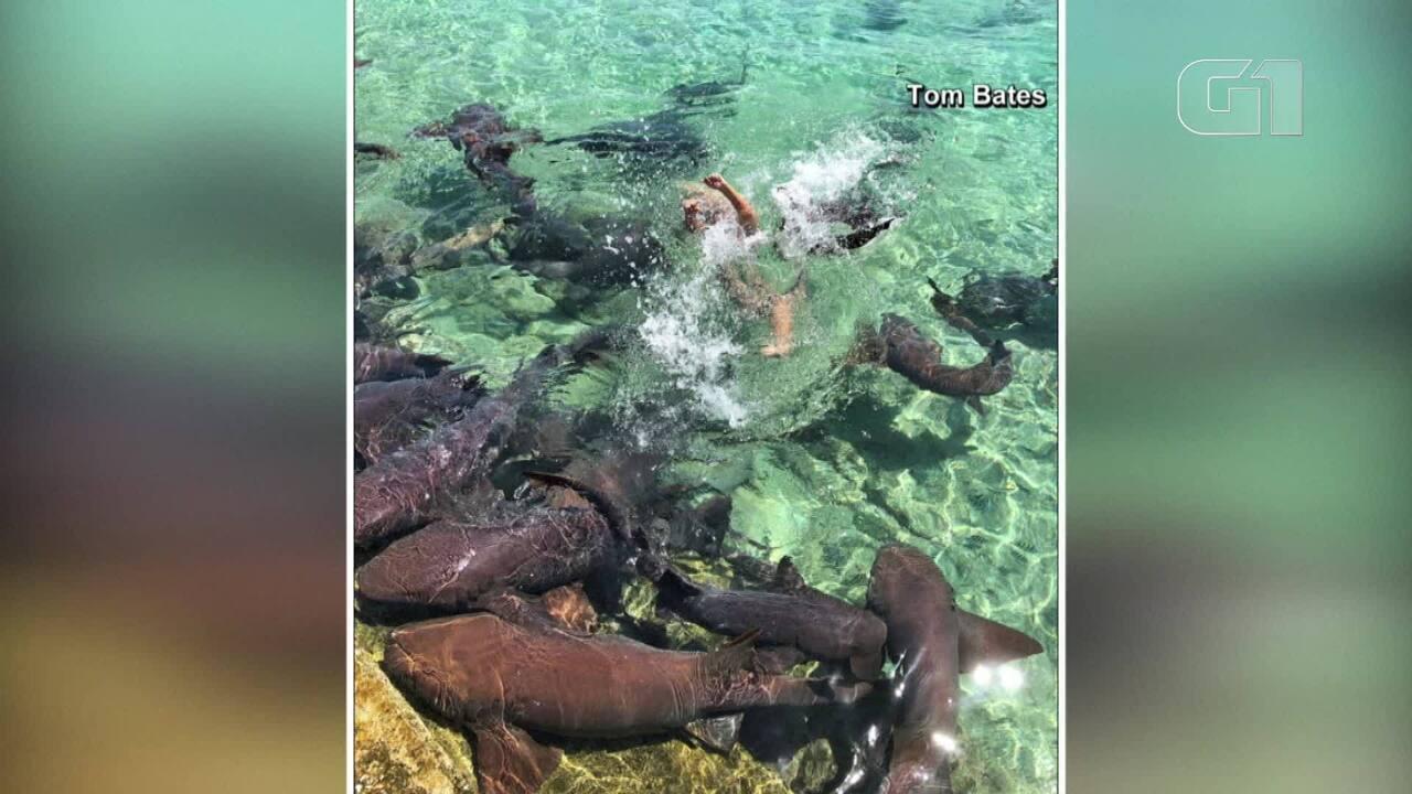 Mulher é atacada por tubarão ao posar para fotos nas Bahamas