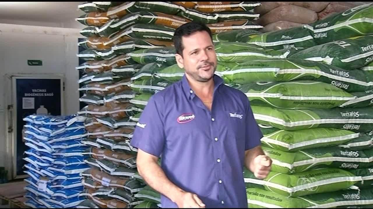 Gado demanda mais ração durante o período seco e vendas crescem no Tocantins
